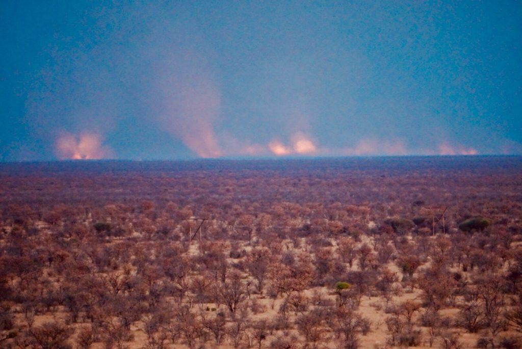 Buschfeuer im Etosha Nationalpark.