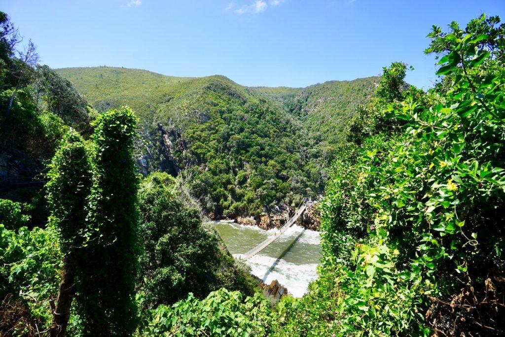Panorama auf die Hängebrücke im Tsitsikamma-Nationalpark, Garden Route, Südafrika