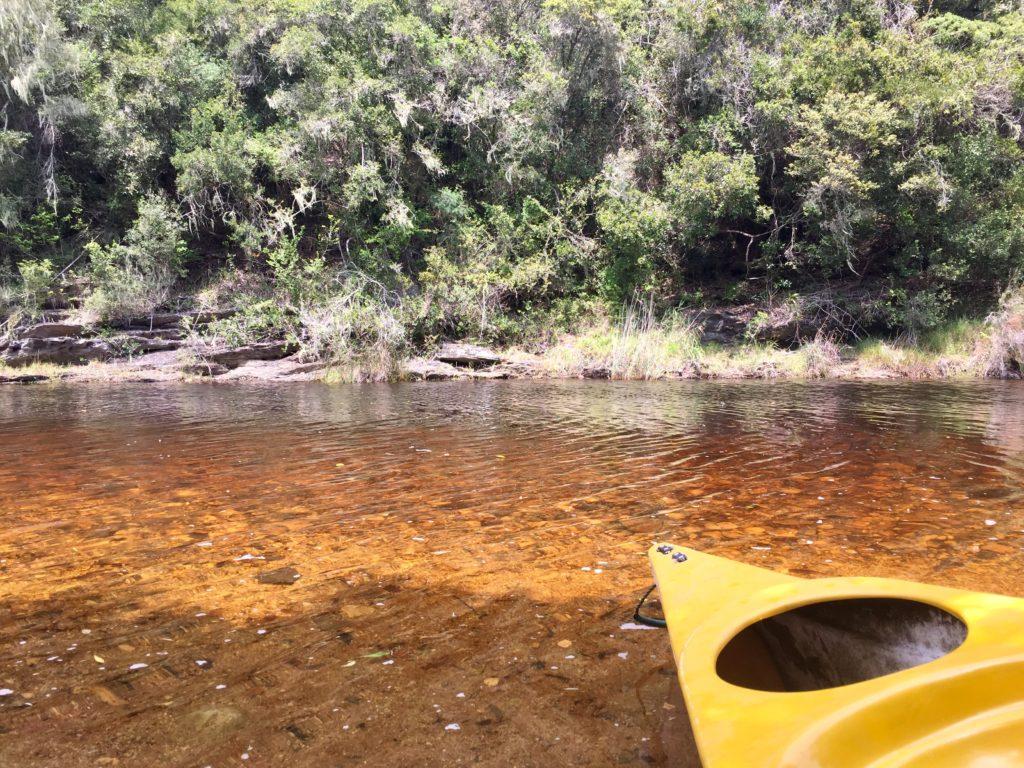 Mit dem Kanu durch Wilderness an der Garden Route in Südafrika