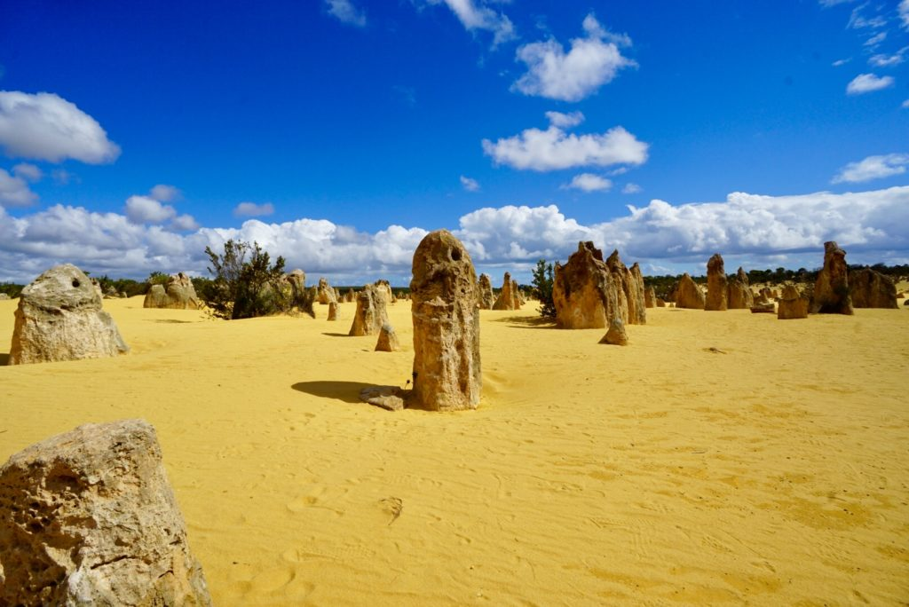Australiens Südwesten - The Pinnacles