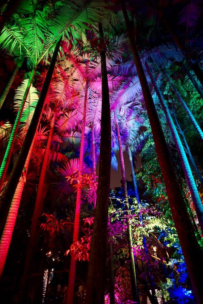 Enchanted Garden - Brisbane zur Weihnachtszeit