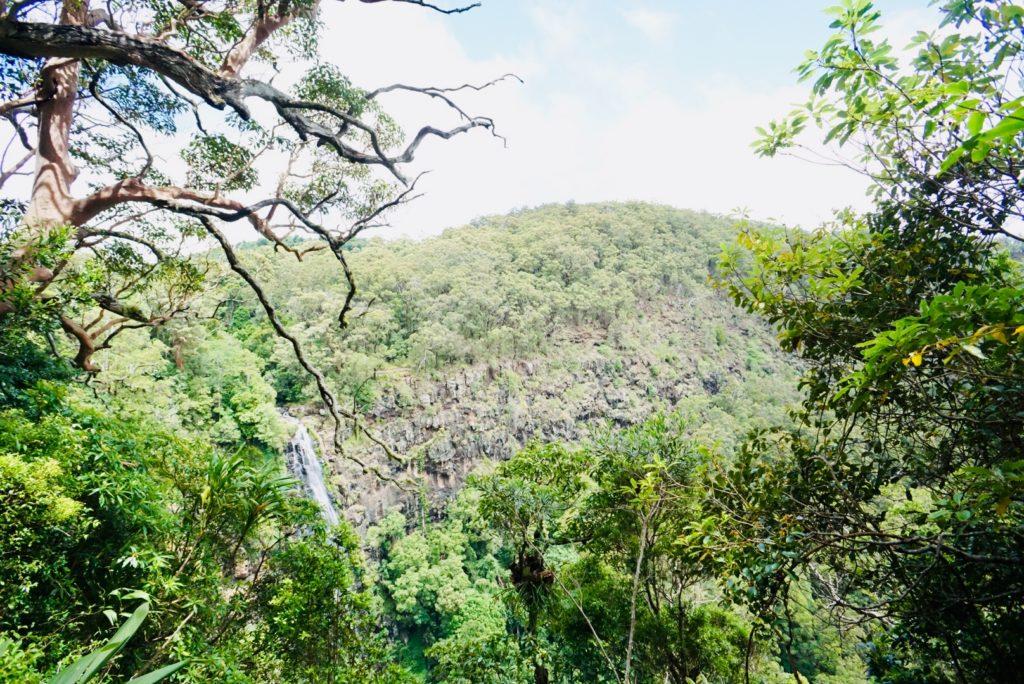 Panorama der Morans Falls im Lamington National Park