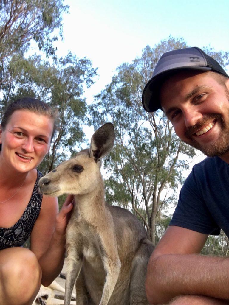 Camping mit Kängurus in Australien