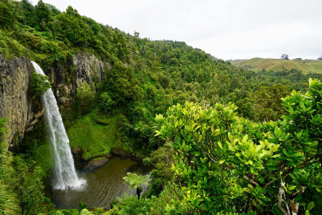 Die Bridal Veil Falls bei Reglan, Nordinseel Neusland
