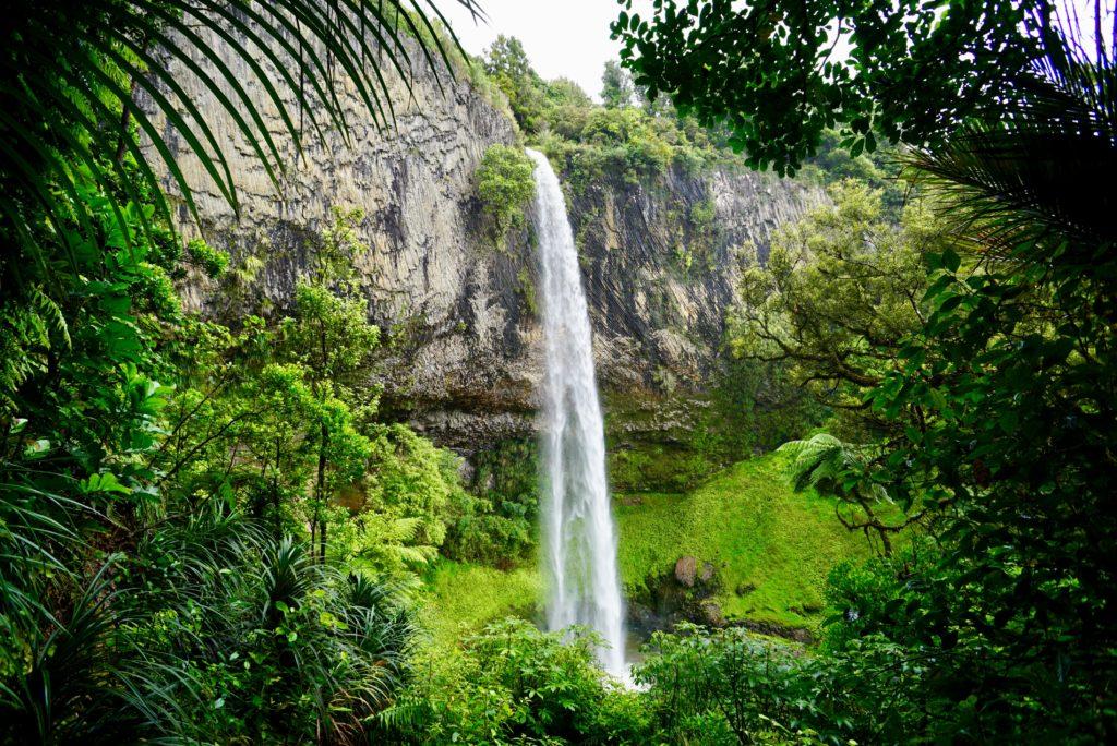 Bridal Veil Falls - Neuseelands Nordinsel